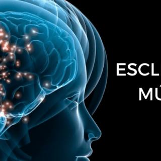 Bruce Trapp, PhD en Descubrimiento del Nuevo Subtipo de Esclerosis Múltiple
