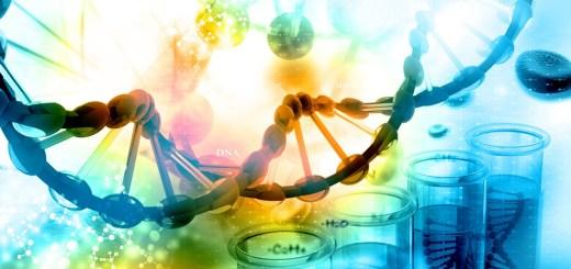 DNA, eerr