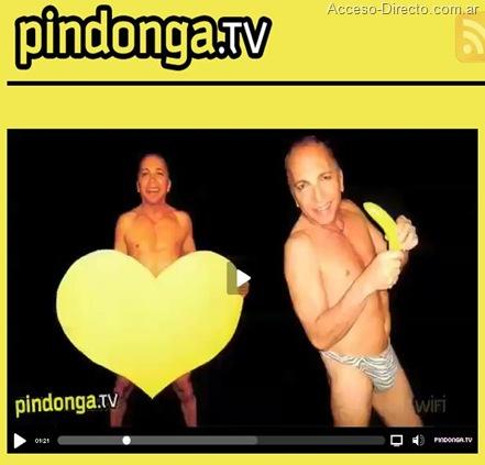 Pindonga