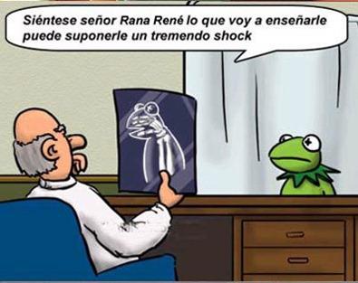 rana_rene
