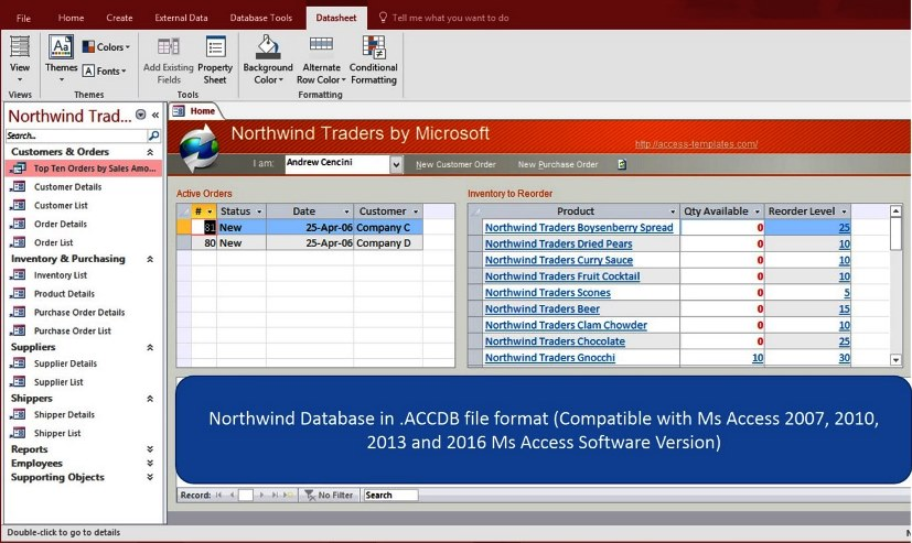 microsoft access 2013 database templates