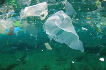 Koniec jednorazowych plastików