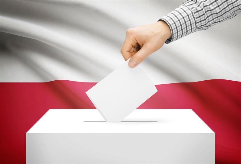 Wybory samorządowe – jak głosować?