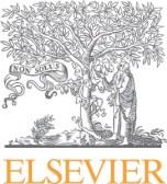 Elsevierlogo(3)