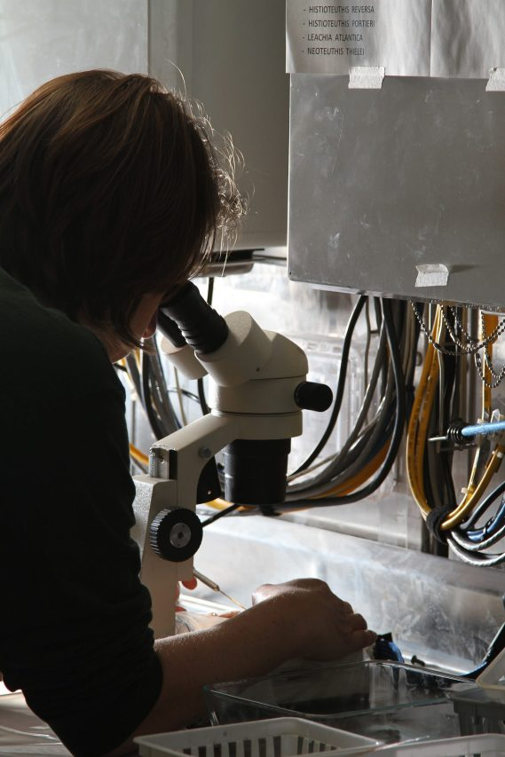 A woman looks into a microscope. She is feeling satisfied with her career change after working with a career consultant in Houston, TX with Accessible Career.
