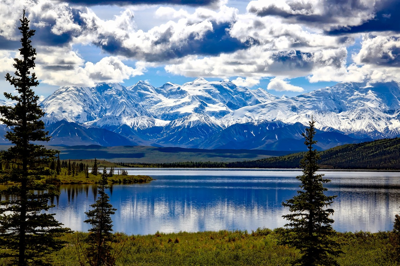 denali national park alaska usa