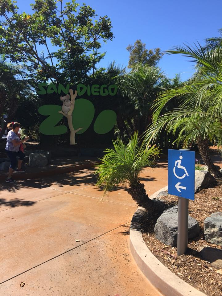 San Diego zoo california usa2
