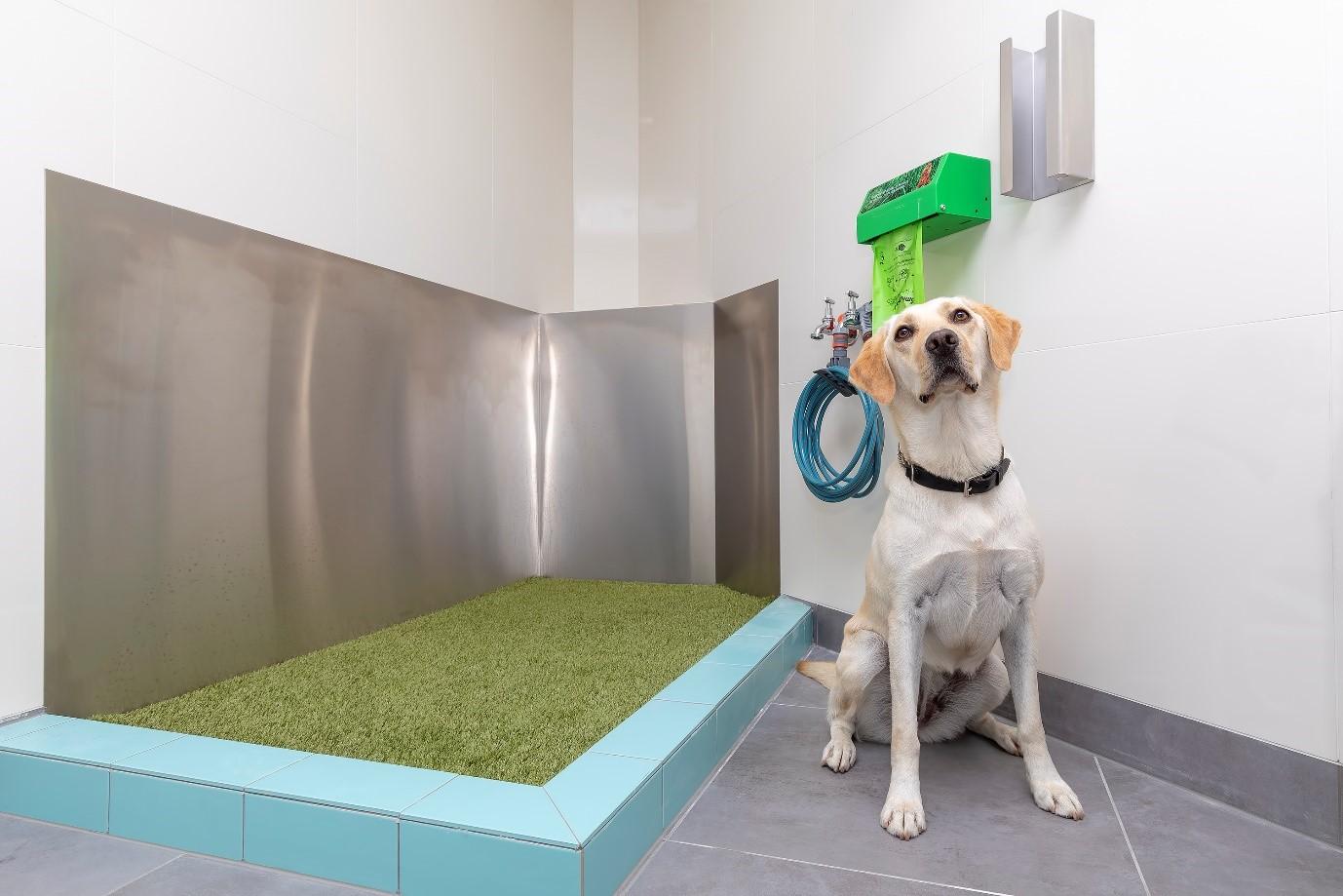 Service Dog toilet Sydney Airport