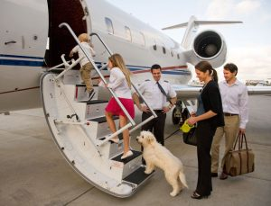 5 Reasons Why a Private Jet Rental is Perfect for Family Travel - Eliminate Much of the stress of flying - Fly on your terms - Access Jet Group