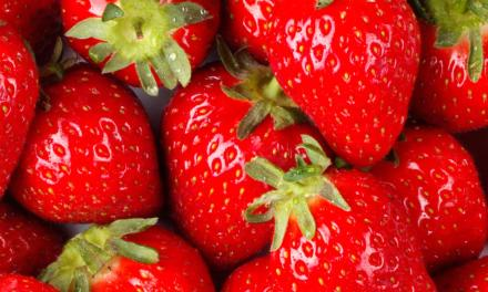 20th Annual Strawberry Festival