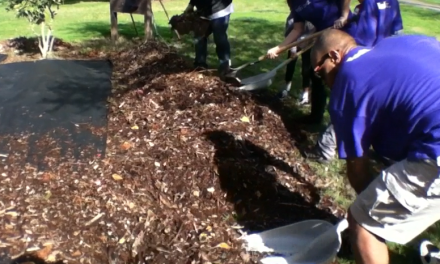 VIDEO: Land Park Volunteer Corps Determined to Better Their Community