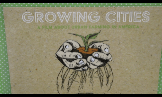 VIDEO: Growing Cities Screening at Sacramento Food Bank and Family Services Center