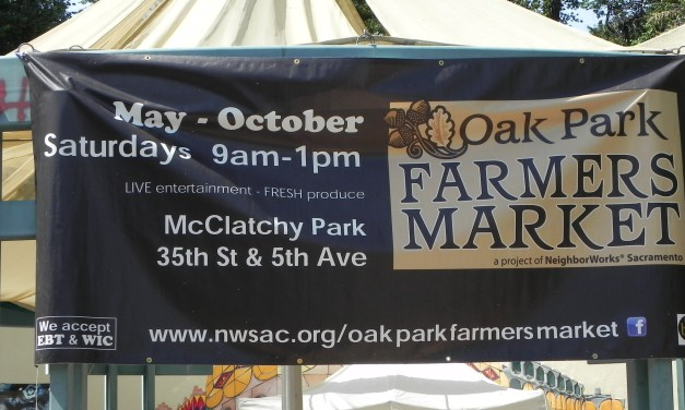 VIDEO: Oak Park Farmers Market