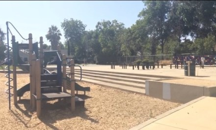 VIDEO: Jack Davis Community Park Party