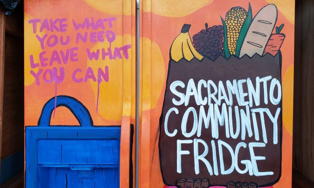 Oak Park Community Fridge Provides A New Food Resource