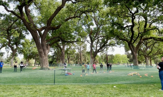 """Elk Grove Hosts """"Fit Fest"""" To Bring Health And Happiness to Their Community"""