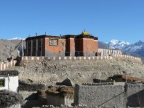 Palace of upper mustang