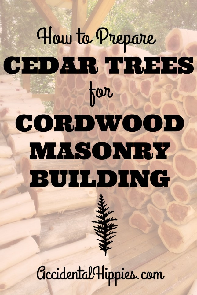 Cordwood masonry is a time-tested green building technique that is costs next to nothing and is practical for many homesteaders. If you want to build a chicken coop, shed, playhouse, garage, or even a house out of cordwood masonry, then preparing your cedar trees correctly will make the job a lot quicker and easier. In this step-by-step guide, we lay out the exact process we use to cut down and prepare cedar trees from our property to use in our cordwood building.