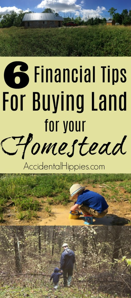 Our 6 biggest financial lessons we learned while buying land to build our off grid homestead.