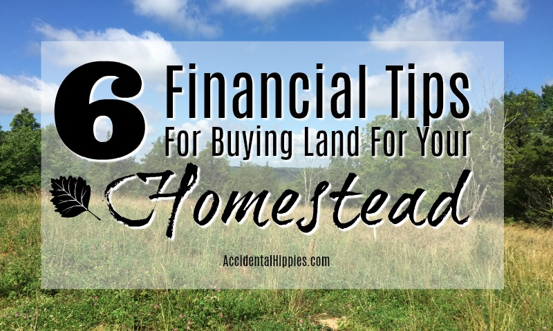 Our 6 biggest financial lessons we learned while buying land to build our off grid homestead