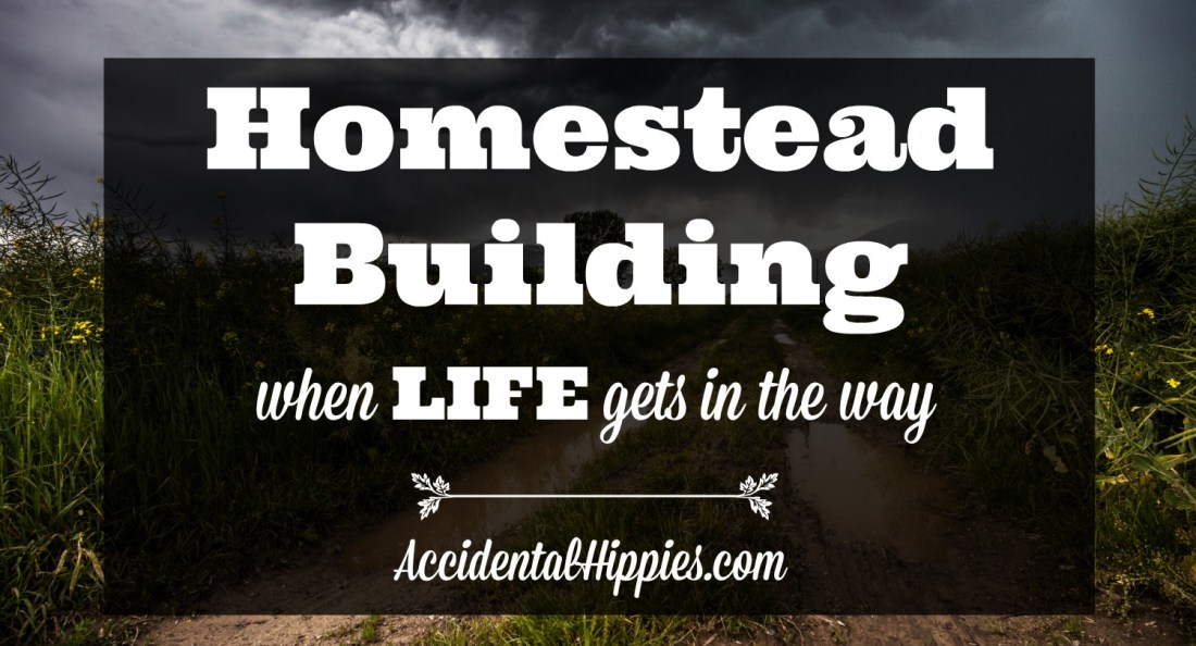 If you are looking at building your own house one day, or if you want to start a homestead but don't know if you can do it when you and your partner both have to work, what are some of the realities of such a situation and how can you deal with it? Here's what we're doing to make it work. #homesteading #buildahouse