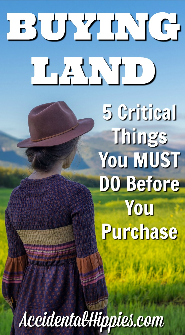 Buying land 5 critical things to do before you purchase for Home need things