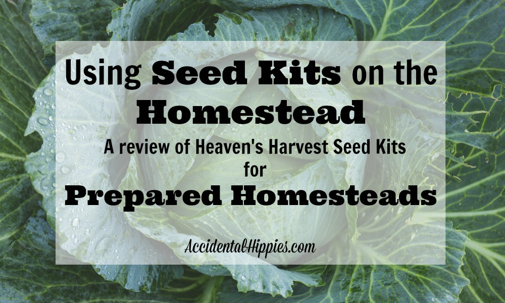 Seed kits are good investment for your preps, but are they right for you? Read this review of one seed kit to find out how you can use seed kits to enhance your homestead's preparedness.