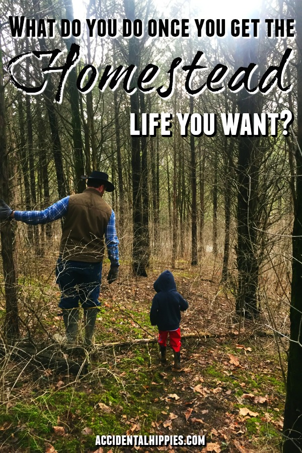 We took 3 years to build a our off-grid homestead from scratch. What are we doing now? That's a loaded question. What would YOU do after getting that homestead life you want? Here's how we're focusing. #selfsufficiency #offthegrid #homesteading