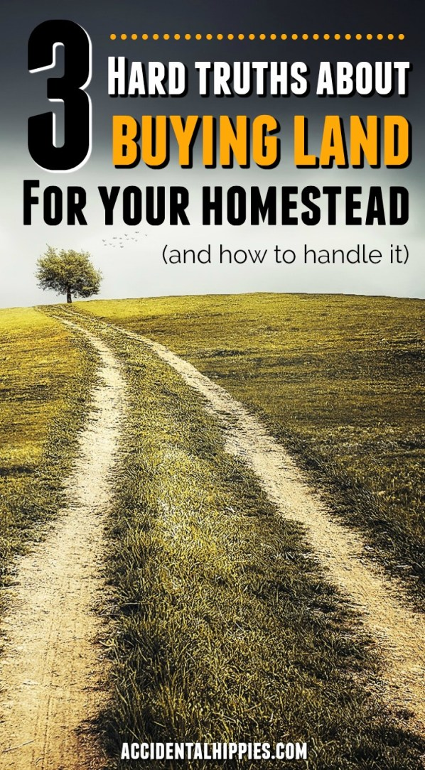 You want to buy land and build your dream homestead. You search the MLS for parcels of land that fit your family's needs, but you keep coming up empty. Or the land you find doesn't have what you want. We bought 16 acres and built a homestead from scratch. These are the three hard truths we learned about the process of buying homesteading land, and what you can do about it. #homesteading #buyingland #howtobuyland