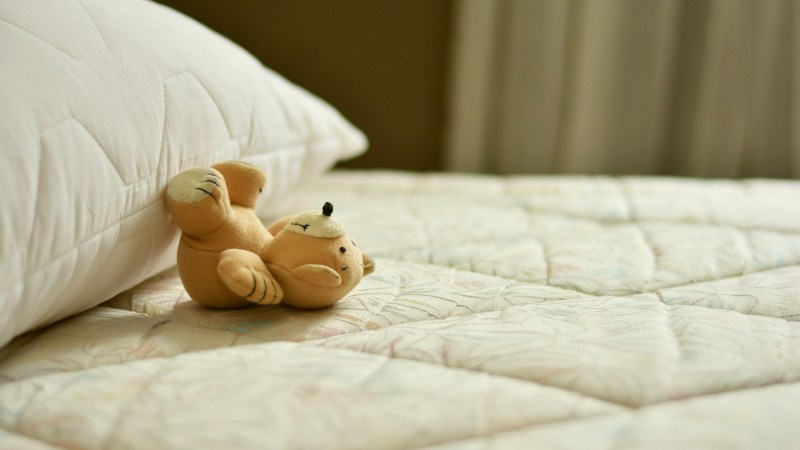 Should Your Family Sleep on a High-Quality Organic Mattress?