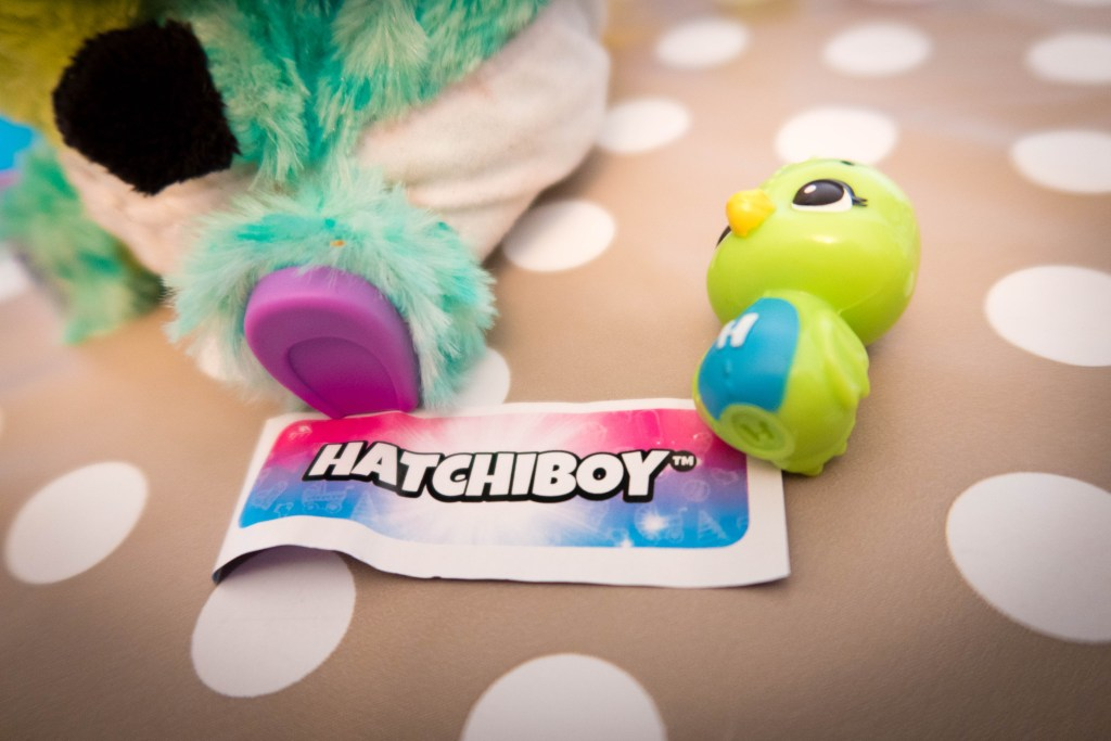 The paper tells us our hatchibaby is a hatchiboy!