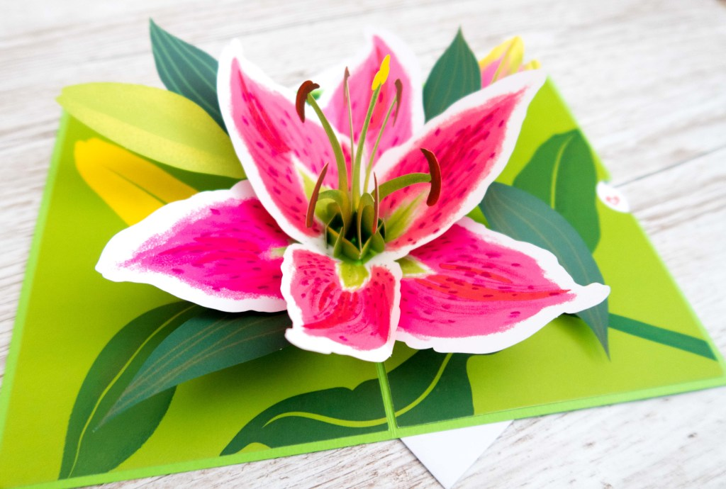 Fabulous Mother's Day Gift Ideas