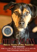 Ottie's Glass