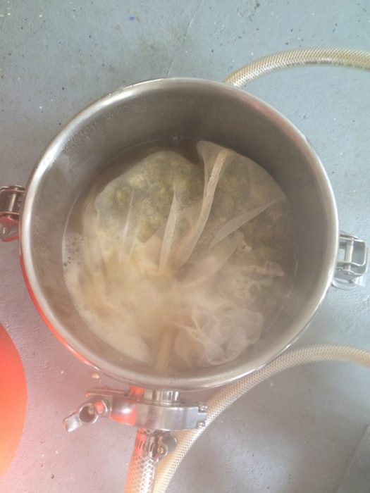 Hot Hop Soup