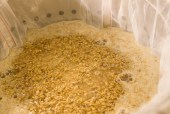 grain in