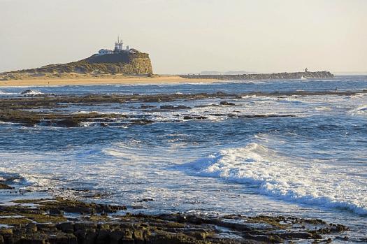 Image-of-Australia-nsw-whales-Nobbys-Lighthouse
