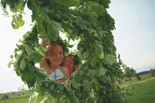 Sweden-midsummer-greenery-credit-carolina-romare