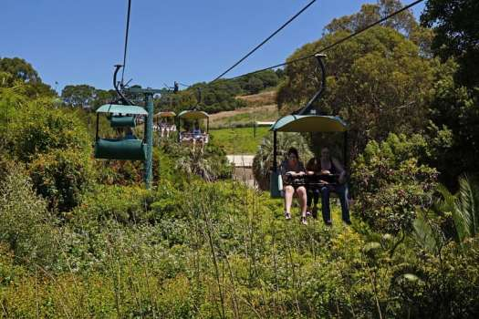 Usa-oakland-zoo-cable-car-credit-with-people-allie-caulfield