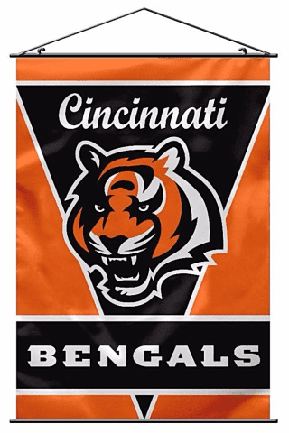Nfl-cincinnati-bengals-wall-banner-amazon