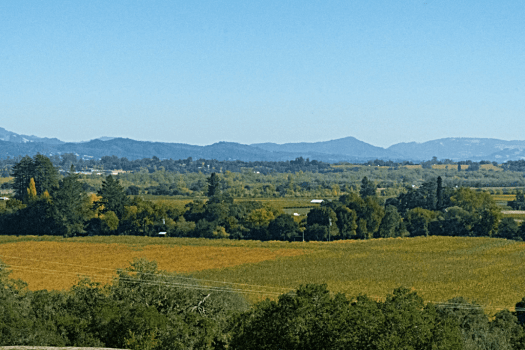 Sonoma-country-tasting_rooms_wineries_Armida_by_Mariah_Harkey_Sonoma_County_006-X2
