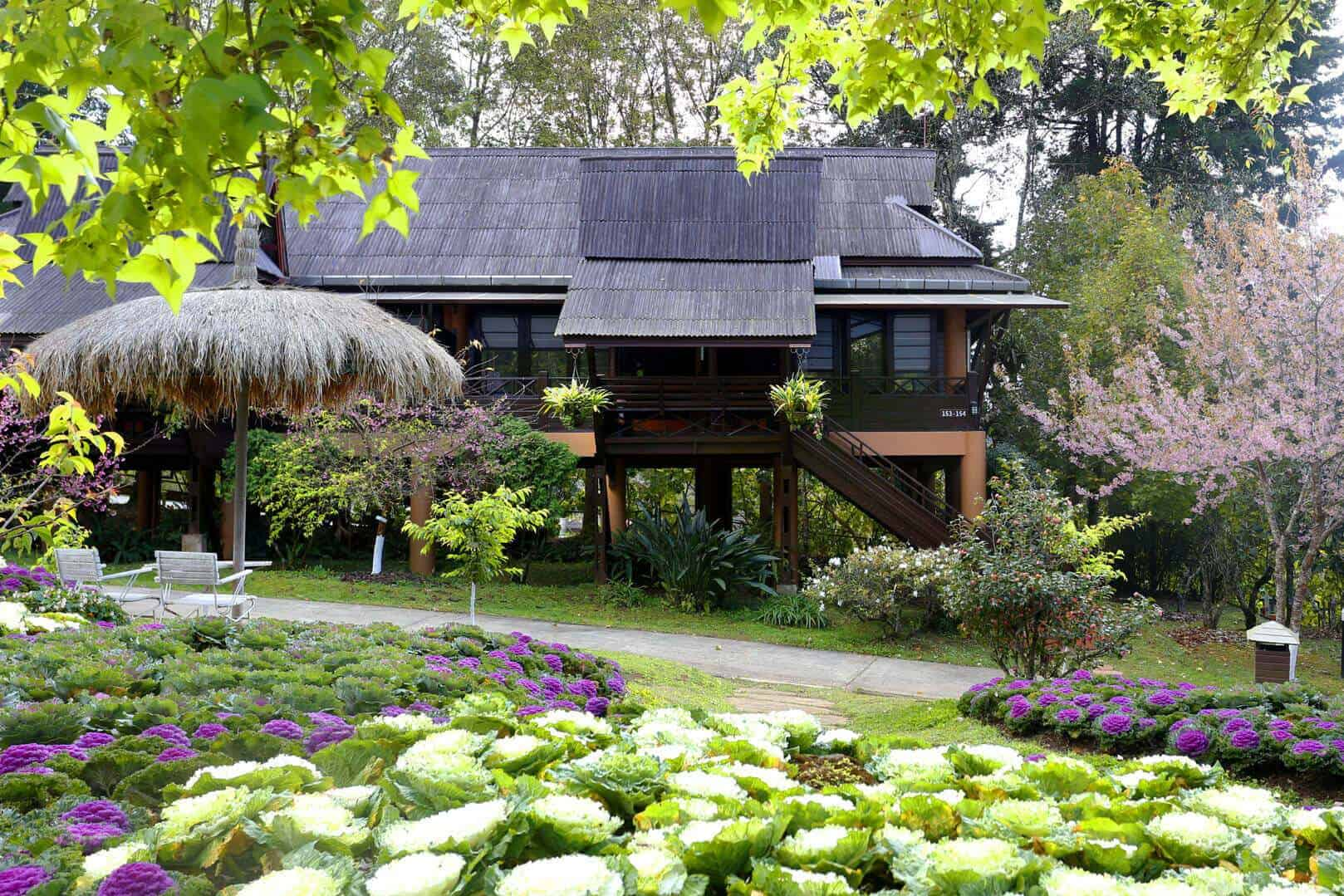 angkhang-nature-resort-chiang-mai-thailand