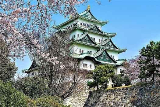 japan-Nagoya-Castle-with-Cherry-blossoms-credit-hiroaki-kaneko