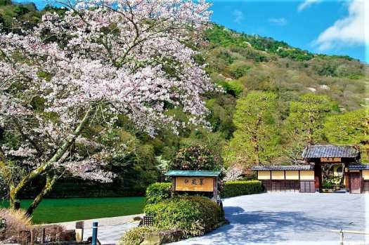 suiran-a-luxury-collection-hotel-in-kyoto-japan