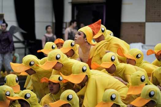 hong-kong-dance-company-performing-sea-of-smiling-ducks