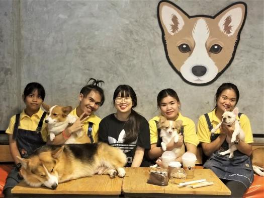 staff-with-dogs-at-bangkok-dog-caffe