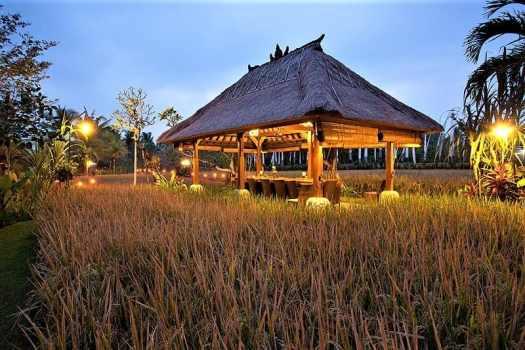 bali-restaurant-Bebek-Tepi-Sawah