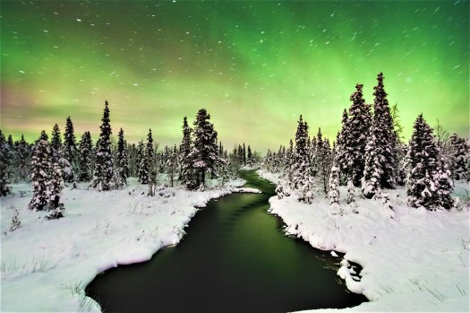 swedish-northern-lights