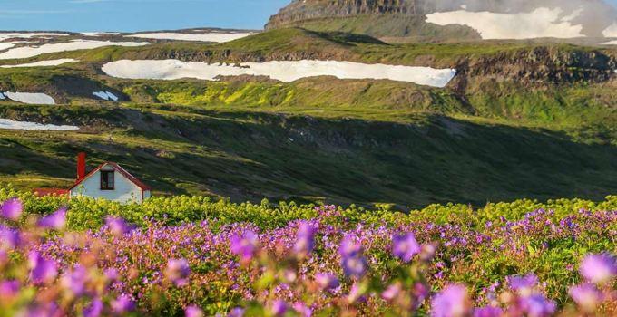 Hornstrandir Nature Reserve - National Parks in Iceland