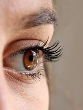 false eyelashes beauty