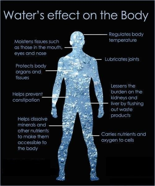 Benefits of Drinking Water Fitness & Yoga